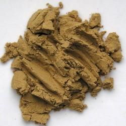 Právenka latnatá extrakt (10%)