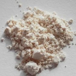 Hordenine izolát