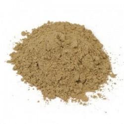 Theobroma cacao extrakt